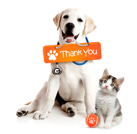 Thank you for visiting Discount Pet Medication where we always provide the best value with great service